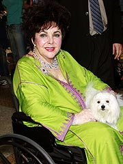 Liz Taylor Refutes Alzheimer's Reports