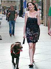 Anne Hathaway Credits Her Dog for Landing Jane Role