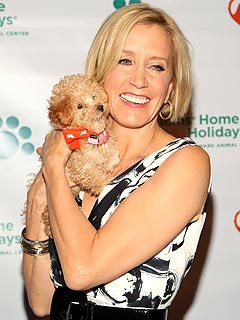 Felicity Huffman Gets Ruff Road Rage Lesson