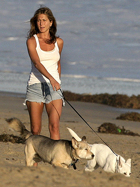 epub language structure and environment social