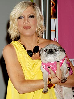Tori Spelling Mourns Beloved Pug Mimi LaRue