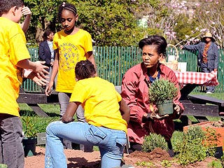 Michelle Obama Gets Knees Dirty in White House Garden