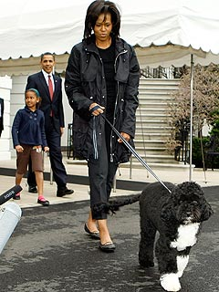Michelle Obama Says New Pooch Bo Is a 'Crazy' Dog