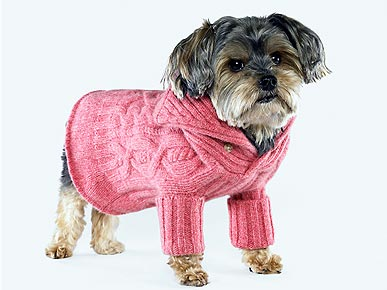 Check It Out: Chic Winter Wear for Hot Dogs