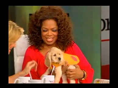 VIDEO: Oprah Introduces Her 'New Baby,' Sadie