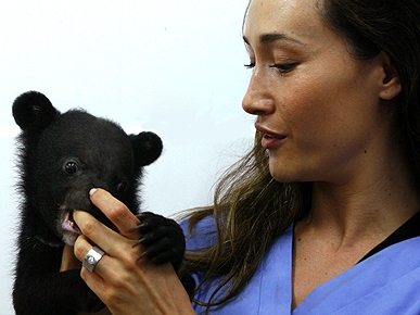 Actress Maggie Q's Beary Good Cause