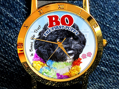 Watch Out! First Puppy Bo Gets His Own Wristwatch