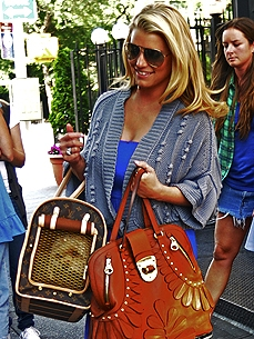 Get the Look: Jessica Simpson's Louis Vuitton Doggie Bag