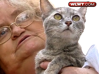 Amazing Discovery! Smoka the Cat Survives 26 Days Buried Under Rubble