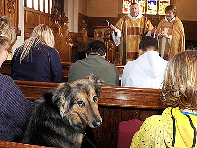 Pious Pooch Attends Church Twice a Week