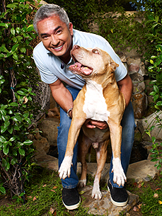 Have a Question for Cesar Millan? Tell Us!