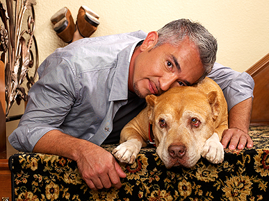 Cesar Millan's Beloved Pit Bull Daddy Dies at 16