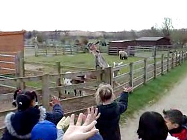 Tuesday's Funny Video: Superstar Goat Waves Hello!