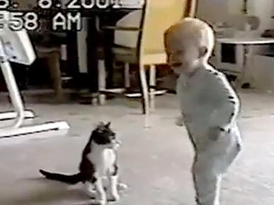 Wednesday&#39;s Funny Video: Kitty-Baby Tickle Fight!