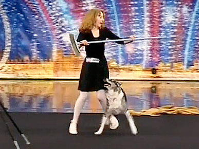 Tuesday's Funny Video: Chandi the Amazing Dancing Dog