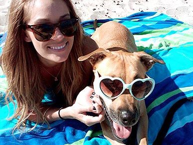 Lauren Conrad&#39;s Dog Chloe Likes to Chew Gum!