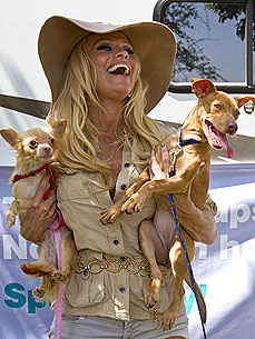 Pamela Anderson Helps Needy Louisiana Pups – And Takes Two Home!