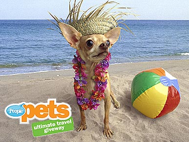Save the Date! PEOPLEPets' Ultimate Travel Giveaway
