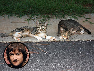 Country Singer Eric Church Saves Two Homeless Cats