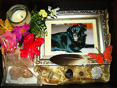 Would You Have a Memorial for Your Pet?