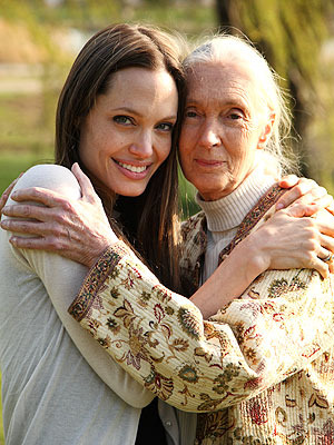 Angelina Jolie Appears in Jane Goodall Film, Jane's Journey