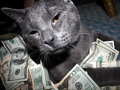 The Richest Pets in America