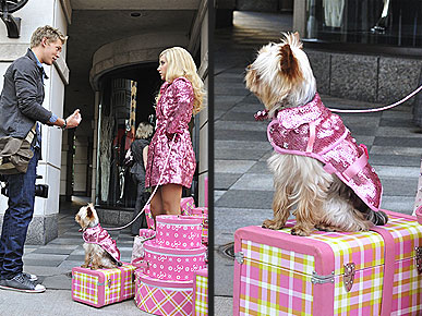 Sharpay's Sparkly Pink Dog Coat