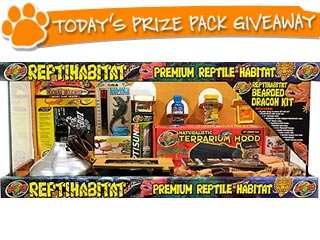 New Giveaway! People Pets Daily Prize Pack Sweepstakes