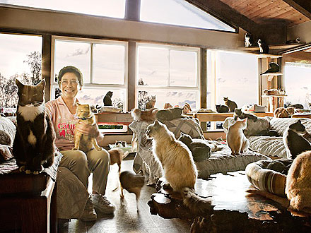 Lynea Lattanzio Owns 700 Cats at Cat House on the Kings