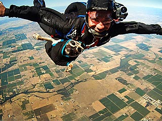 Skydiving Pug Is the New George H. W. Bush