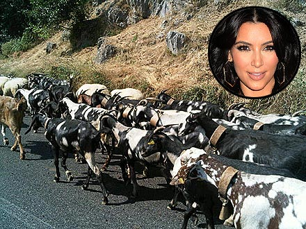 Kim Kardashian, Honeymoon Tweets About Goats