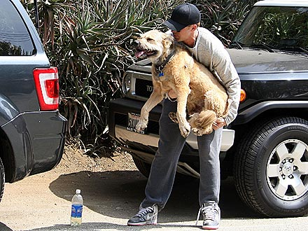 Ryan Gosling Gives His Dog a Lift into the Car