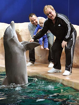 Elton John, David Furnish, Zachary Meet Dolphin: Photo