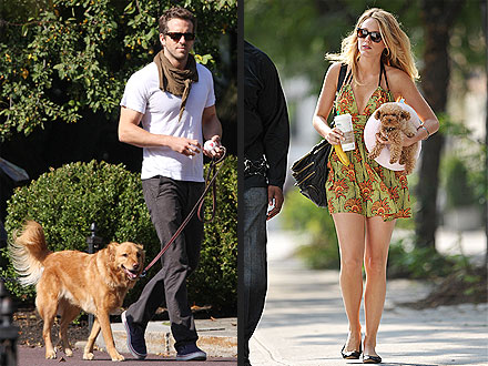 Blake Lively, Ryan Reynolds Have a Doggie Date