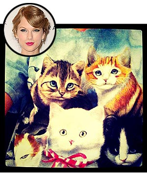 Taylor Swift Wears Cat Shirt from Fan