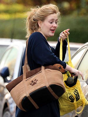 Adele Post-Surgery Photo