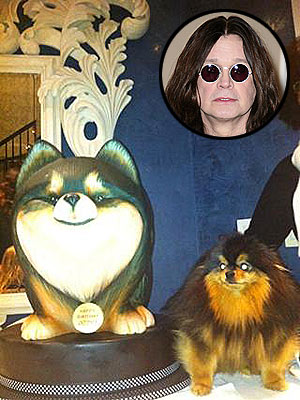 Ozzy Osbourne's Dog Birthday Cake: Photo