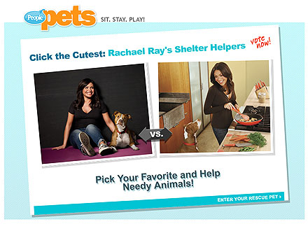 Meet the Winners of Click the Cutest: Rachael Ray&#39;s Shelter Helpers!