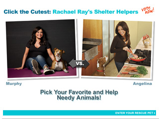 Click the Cutest: Rachael Ray&#39;s Shelter Helpers