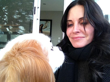 Courteney Cox Joins Twitter, Posts Dog Pictures