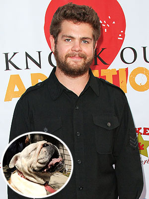 Jack Osbourne&#39;s Dog Dies