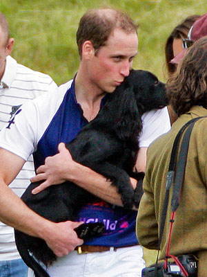 Kate Middleton, Prince William at Polo Match with Dog Lupo