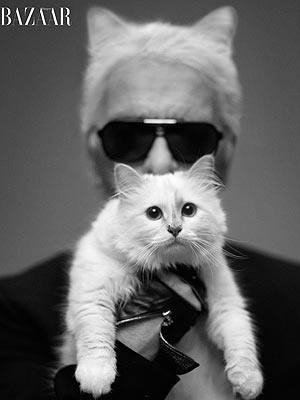 Karl Lagerfeld: Choupette 'Likes the Smell of Juicy Food'