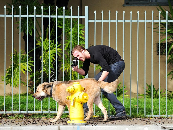 7 Signs Ryan Gosling's in Love – with Dogs