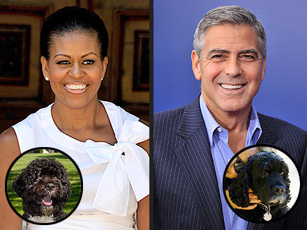 George Clooney, Michelle Obama Want to Be Reincarnated as Dogs