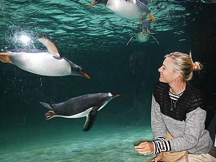 Maria Sharapova Breaks from Tennis – for Penguins!