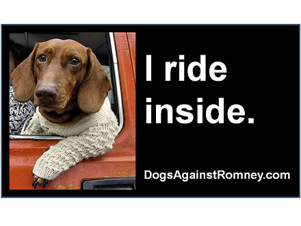 The Water Bowl: Dogs Against Mitt Romney!