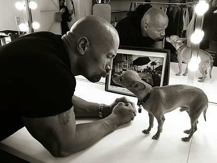 Spotted: The Rock Kisses Up to a Chihuahua