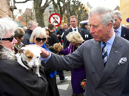 Charles & Camilla Greet Furry Fans in Denmark