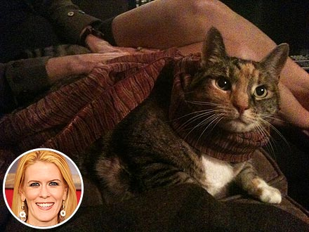 Real Housewives of New York City Alex McCord's Cat Dies